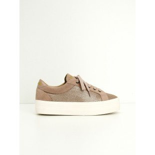 PLATO BRIDGE - ALL STAR/SUEDE - PINK/POUDRE