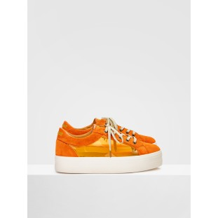 PLATO BRIDGE - SUEDE/PLEXI - ORANGE/ORANGE
